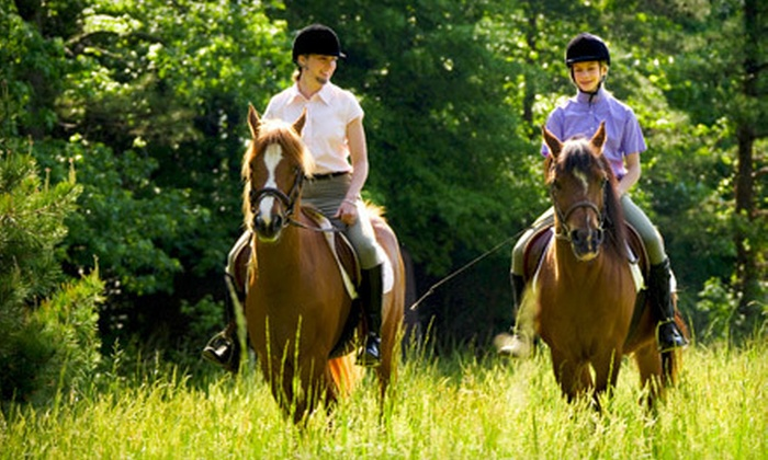 Wildwood Stables - Crossville: 40-Minute Guided Horseback Trail Ride for Two or Four from Wildwood Stables in Crossville (Up to 53% Off)
