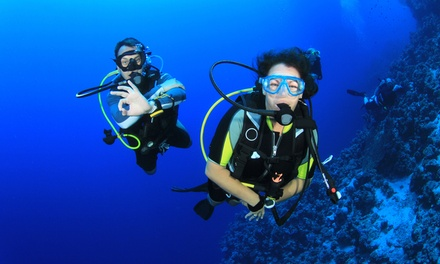 Scuba Certification for Life Course for One or Two at No Limits Scuba (Up to 65% Off)
