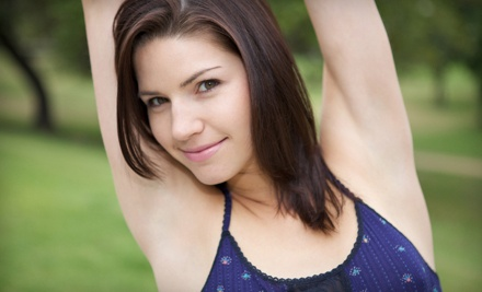 3 Laser Hair-Removal Treatments on a Small Area (a $480 value) - Absolute Skin & Body Care in Novi