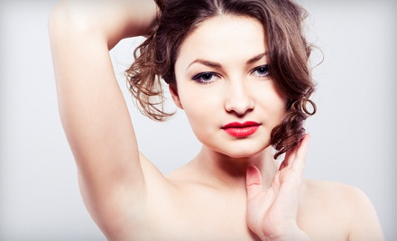 6 Laser Hair-Removal Treatments on a Small Area (a $399 value) - The Laser Lounge Spa in Estero