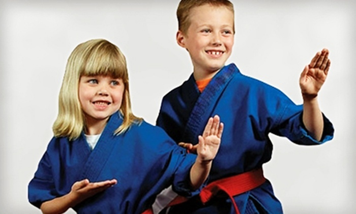 Pro Dojos - Multiple Locations: $20 for 10 Martial Arts Classes at Pro Dojos ($150 Value). 40 Locations Available.