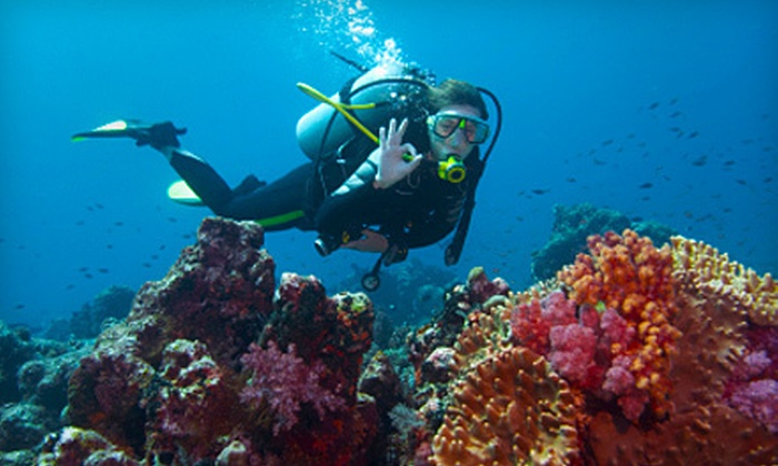 Ocean Sands Scuba - Maplewood: Intro to Scuba Class or Certification With or Without Mask and Snorkel at Ocean Sands Scuba in Holland (Up to 72% Off)