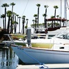 Up to 79% Off from San Diego Sailing Tours