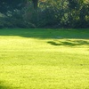 Up to 61% Off Lawn-Care Services