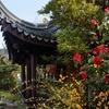 Up to 50% Off Lan SuChinese Garden Visits