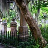 Up to 57% Off from Old Charleston Walking Tours