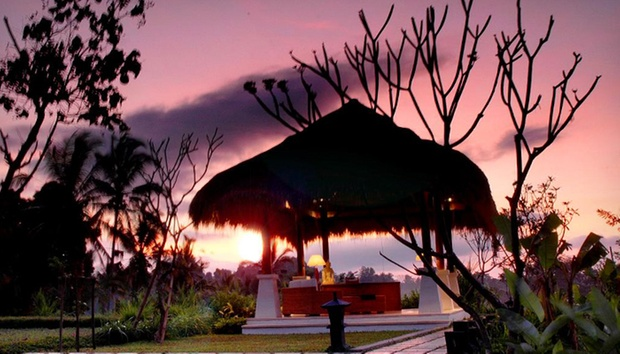 Bali: 4* Stay in Jungles of Ubud 9