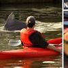 Up to 53% Off Kayak Tour or Rental