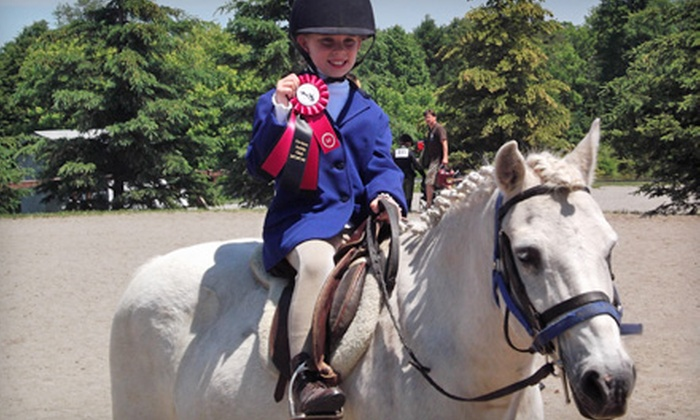 Gemstone Equestrian - Uxbridge: 5 One-Hour or 10 Half-Hour Private Horseback Riding Lessons at Gemstone Equestrian in Uxbridge (Up to 55% Off)