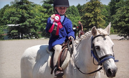 5 One-Hour Private Equestrian Lessons (a $177.64 value, including HST) - Gemstone Equestrian in Uxbridge