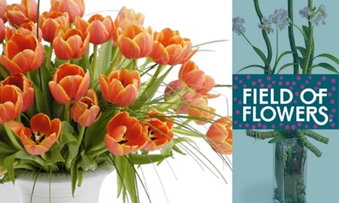 Half Off From Field Of Flowers Field Of Flowers Groupon