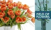 Field of Flowers - Multiple Locations: $30 for $60 Worth of Fresh-Cut Floral Design and Delivery from Field of Flowers