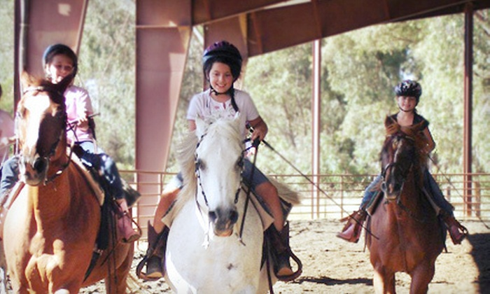 Tammy McDonald Training - Washington Trail: Three 30- or 60-Minute Group Horseback-Riding Lessons at Tammy McDonald Training in Newcastle (53% Off)