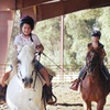53% Off Horseback-Riding Lessons in Newcastle