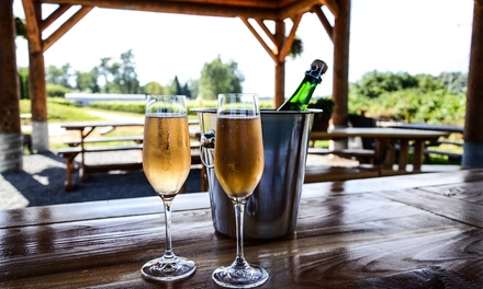 Bubble Tour, Tasting, and Food Pairing for Two or Four at Backyard Vineyards (Up to 50% Off)