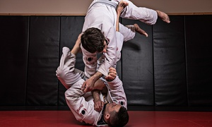 Long's Martial Arts: One Month of Unlimited Jiu-Jitsu for One or Two People at Long's Martial Arts (Up to 76% Off)