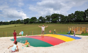 Wellsfield Farm : Family Ticket to Wellsfield Farm (50% Off)