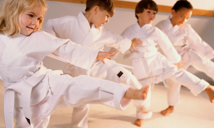 Dennis Wright Martial Arts - Mokena: Four Weeks of Unlimited Martial Arts Classes at Wrights Martial Arts (40% Off)