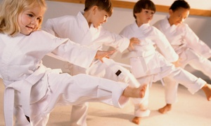 Dennis Wright Martial Arts: Four Weeks of Unlimited Martial Arts Classes at Wrights Martial Arts (40% Off)