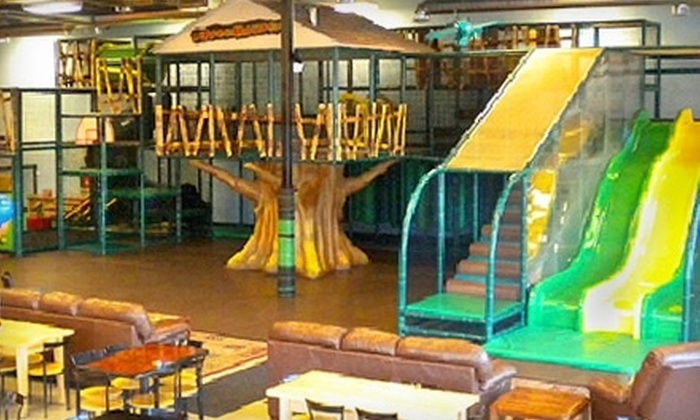 Chicago TreeHouse - Lake Zurich: $25 for Five Indoor-Play Visits at Chicago TreeHouse ($52.50 Value)