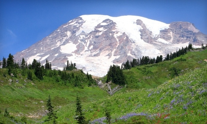 Customized Tours - Multiple Locations: $47 for a Mount Rainier Day Tour from Customized Tours (Up to $95 Value)