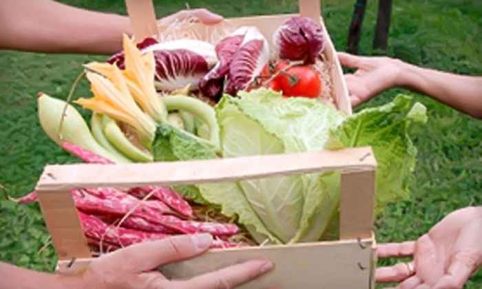 Backyard Produce: $18 for Delivery of One Box of Local and Organic Produce from Backyard Produce
