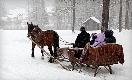 Choice of Sleigh- or Carriage-Ride Package for 1 (a $24 value) - Cornerstone Ranch in Princeton