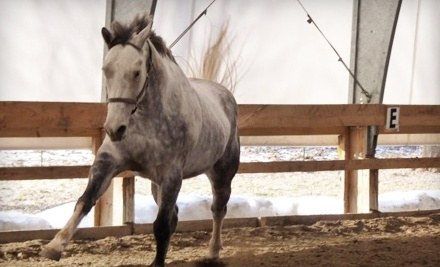 Half-Hour Private Riding Lesson for 1 (a $35 value) - The Lazy Horse Equine Center & Hannanna Stables in Ballston Spa