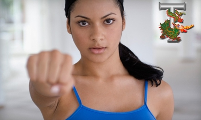 Tracy's Karate - Multiple Locations: $39 for Four Private Lessons at Tracy's Karate ($99 value)