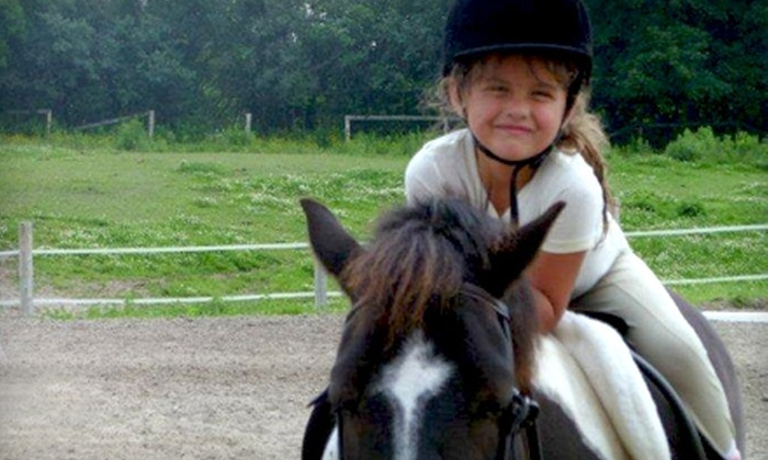 Heartland Equestrian - Whitby: $35 for One Day of Summer Camp and Helmet Rental at Heartland Equestrian in Whitby ($70 Value)