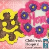 Up to 55% Off Mother's Day Cookies