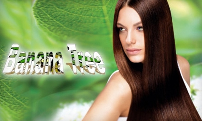 Banana Tree Organic Salon and Spa - Shepherd Community Action Council: Hair and Skin Services at Banana Tree Organic Salon. Choose from Three Options.
