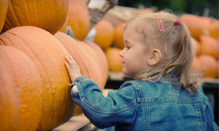 TG Farms Pumpkin Patch - Multiple Locations: $10 for Fall Farm Activities for Two with Corn Maze and Take-Home Pumpkins at TG Farms Pumpkin Patch (Up to $20 Value)