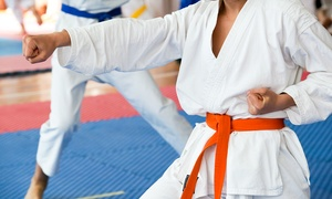 USA MMA Academy:  Adult Membership or 10 or 20 Adult or Child Jiu Jitsu or Karate Classes at USA MMA Academy (Up to 72% Off)