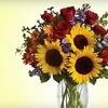 Half Off Flora or Floral-Arranging Class