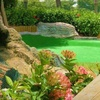 Half Off Mini Golf and Gator Feeding for Two at Smuggler's Cove