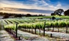 Naggiar Vineyards & Winery - Grass Valley: $35 for a Reserve-Wine Tasting for Two and Bottle of Wine at Naggiar Vineyards & Winery in Grass Valley ($76 Value)
