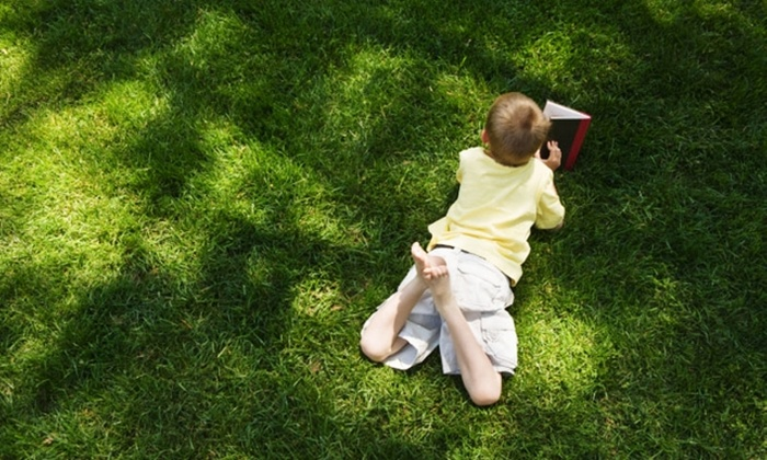 Spring-Green Lawn Care - Lebanon: $20 for Lawn Fertilization and Weed Control from Spring-Green Lawn Care