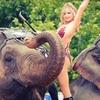LuLu Shrine Circus – Up to 57% Off Performance