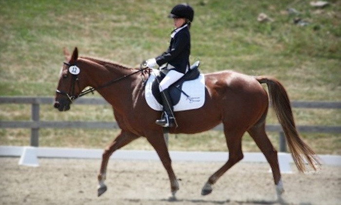 Reddemeade Equestrian Center - Ashton-Sandy Spring: Private or Group Horseback Lessons for One or Two at Reddemeade Equestrian Center in Silver Spring (Up to 55% Off)
