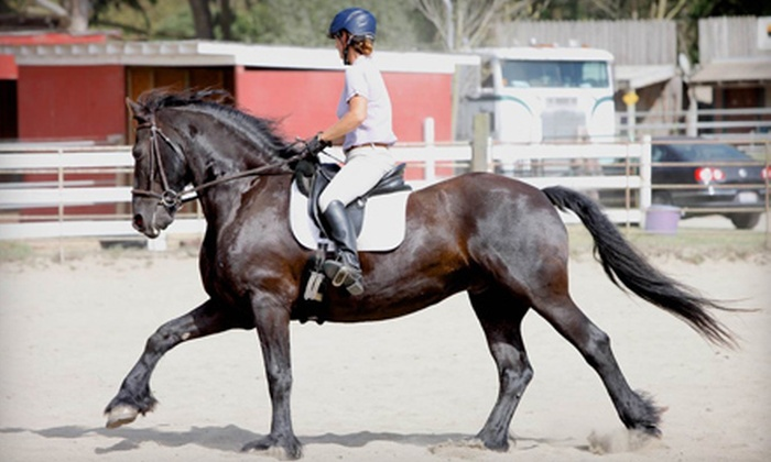 Aspire Equestrian - Half Moon Bay: Horseback-Riding Lesson for One or Two or Horse-Whispering Course for Two or Four at Aspire Equestrian (Up to 51% Off)