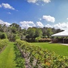 Up to Half Off Wine Tasting in Plant City