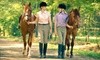 White Horse Equestrian - Streetsboro: One or Three 30-Minute Horseback-Riding Lessons at White Horse Equestrian in Streetsboro (Up to 52% Off)