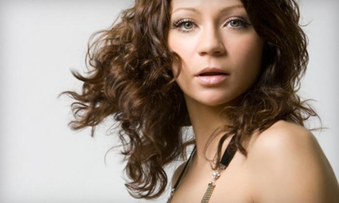 Tanya Steele Hair Design - Wooten: Haircut, Steam Shine, and Blow-Dry or Cut, Highlights, Steam Shine, and Blow-Dry at Tanya Steele Hair Design (Up to 55% Off)