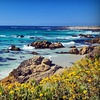 Up to 54% Off Bus Tour of Carmel and Monterey