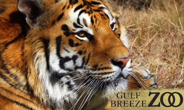 The Gulf Breeze Pensacola Zoo - Gulf Breezes: $6 for General Admission or $4 for Children's Admission to the Gulf Breeze Zoo