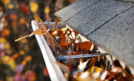 Up to 200 Linear Feet of Gutter Cleaning, Including Downspouts (a $300 value) - Tornado Alley Roofing in