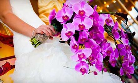 Grand Rapids Wedding Affair on Fri., Jan. 13 at 5PM: Admission for Two - Grand Rapids Wedding Affair in Grand Rapids