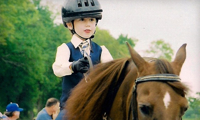 Timbermist Farm - Kansas City: One, Two, or Four Private Horseback-Riding Lessons at Timbermist Farm in Pleasant Hill (Up to 55% Off)