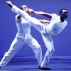 49% Off One Ticket to Dance Show in New Bedford